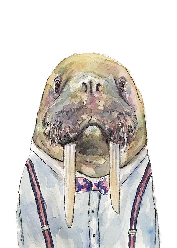 Walrus-suspenders-web.jpg
