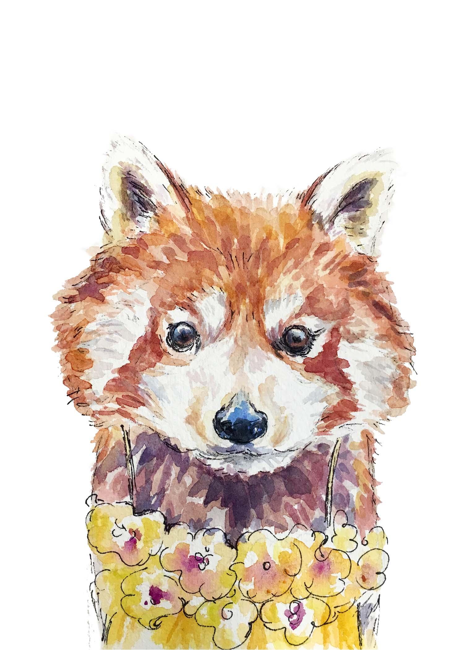 Red-panda-dress-5x7.jpg