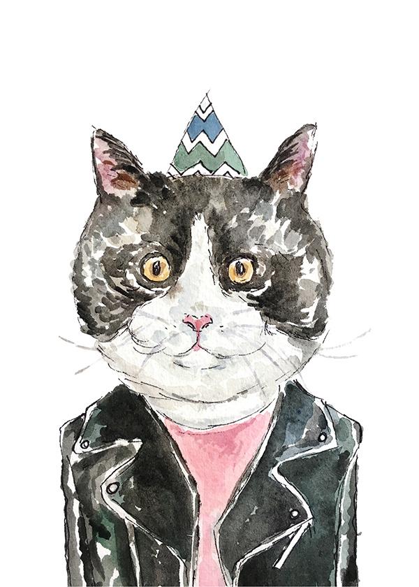 Birthday-cat-leather-web.jpg