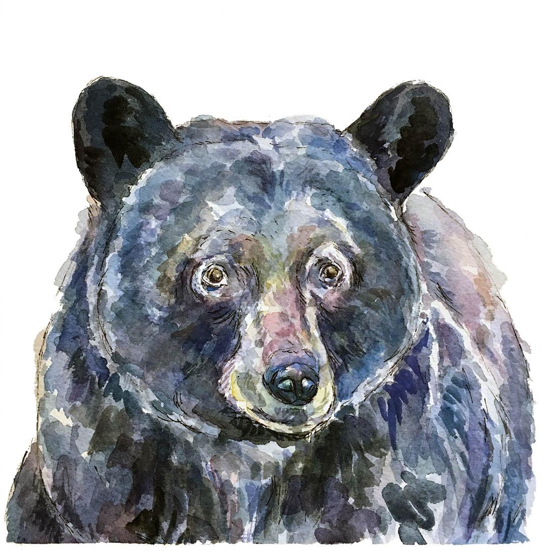 Bear-fat-web.jpg