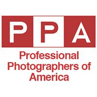 top professional wedding photographers cape cod
