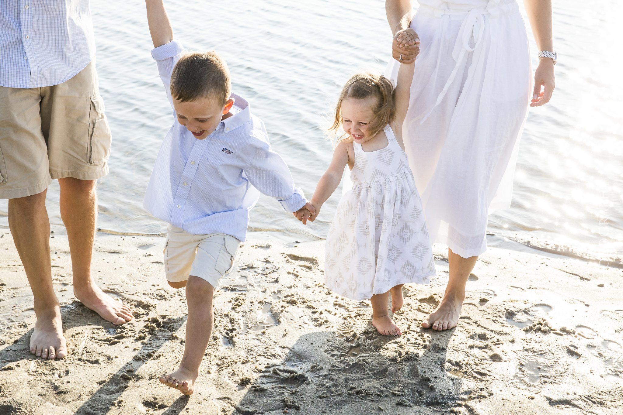 popular cape cod extended family photographers