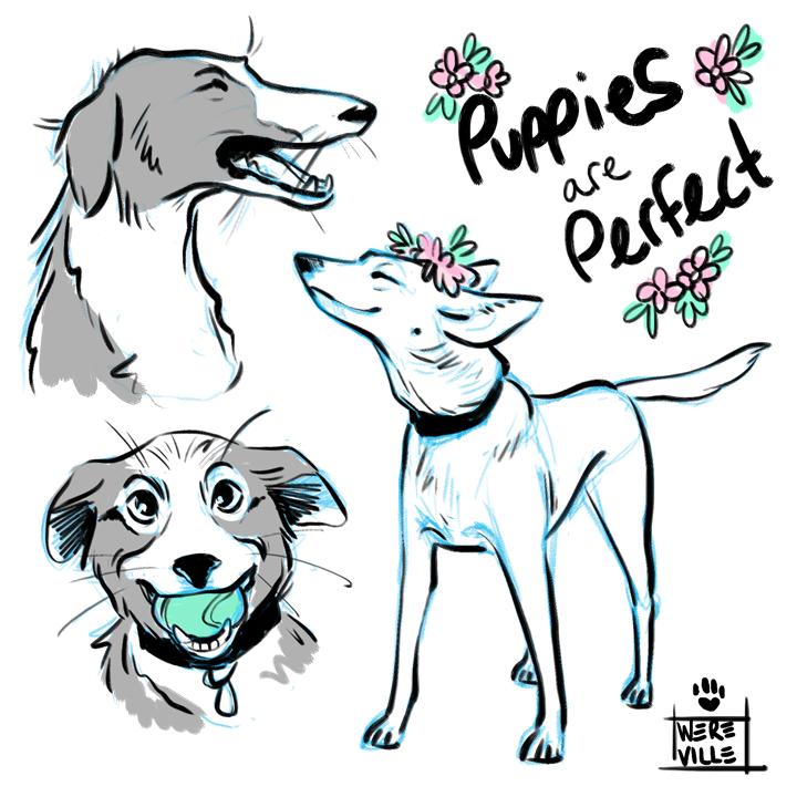 puppiesareperfect.png