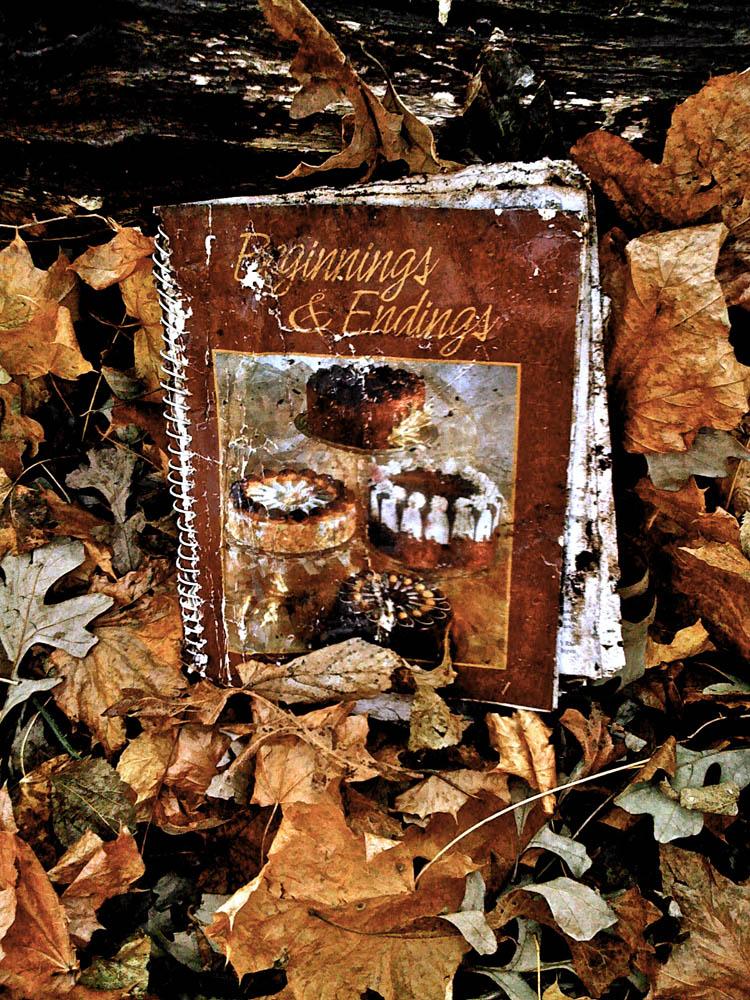 8-Beginnings & Endings.jpg