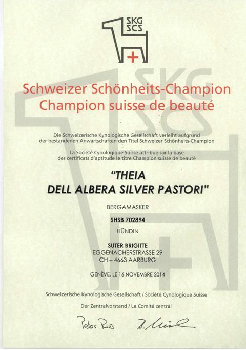 Theia_Urkunde_CH_Champion(1).jpg