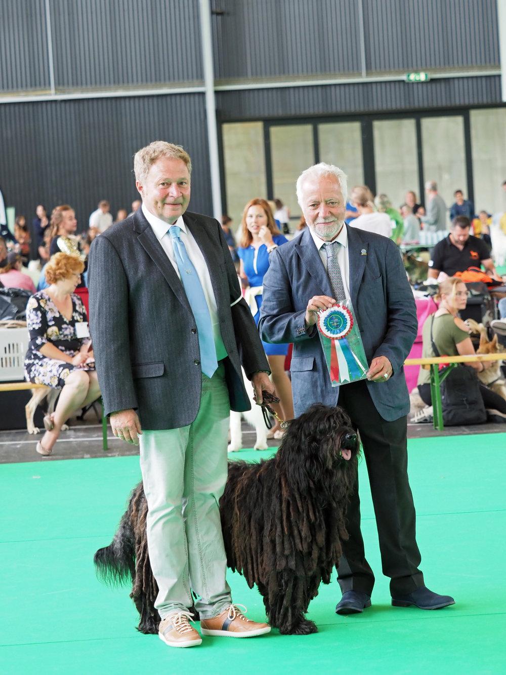 Lieto Del Montevergine:  Benelux Show - Best Veteran
