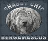 Shabby-chic-logo.png
