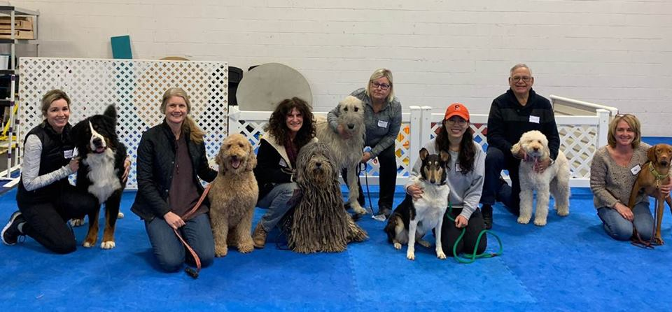 """ WE HAVE SOME GREAT NEWS!! This past Sunday we certified 7 new Therapy Dog Teams with Therapy Dogs International. These very special dogs, big and small, and their dedicated, committed Owners/Handlers have a lot to be proud of. They trained hard and they all did a fabulous job."""