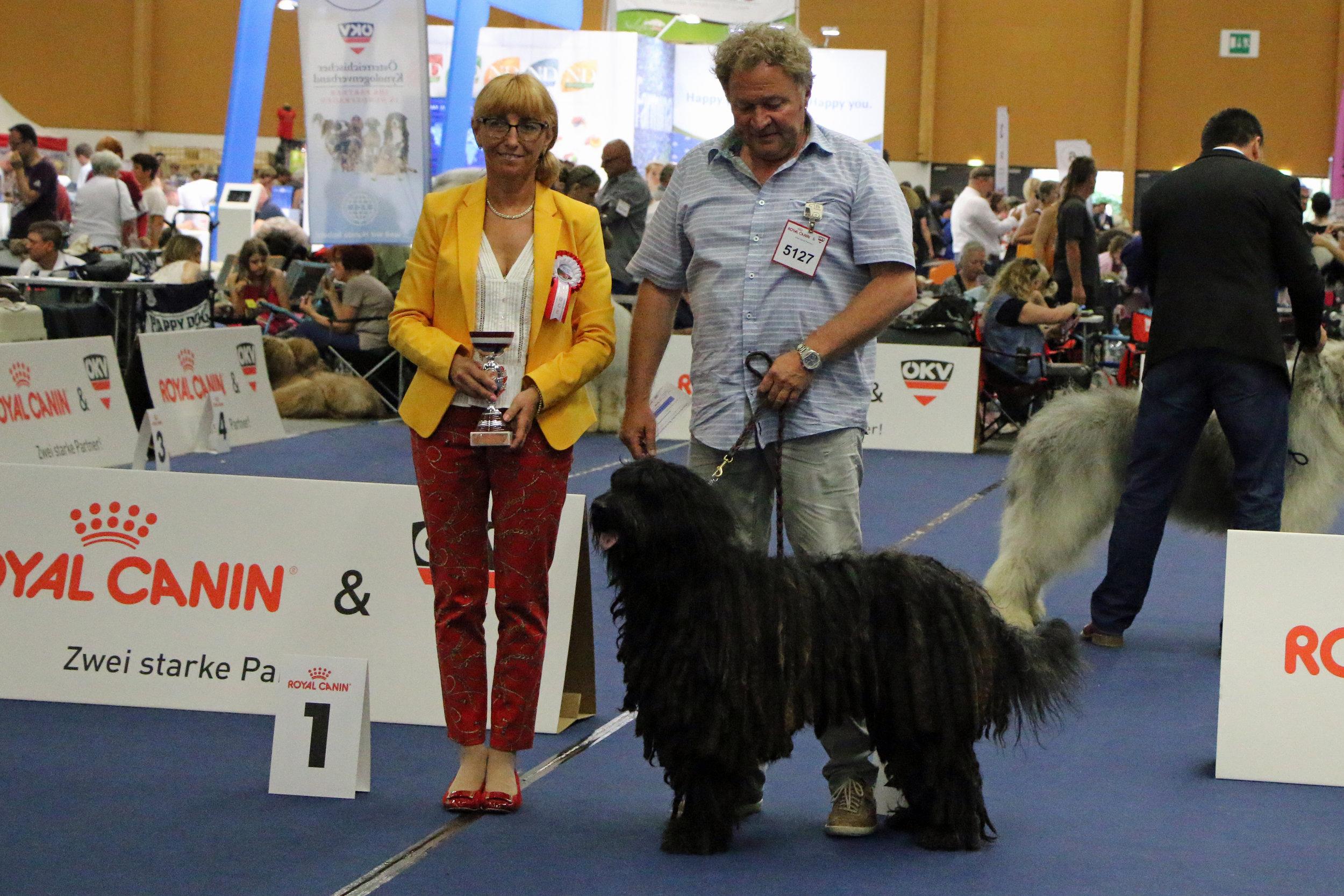 EUROPEAN VETERAN WINNER 2019, Lieto del Montevergine