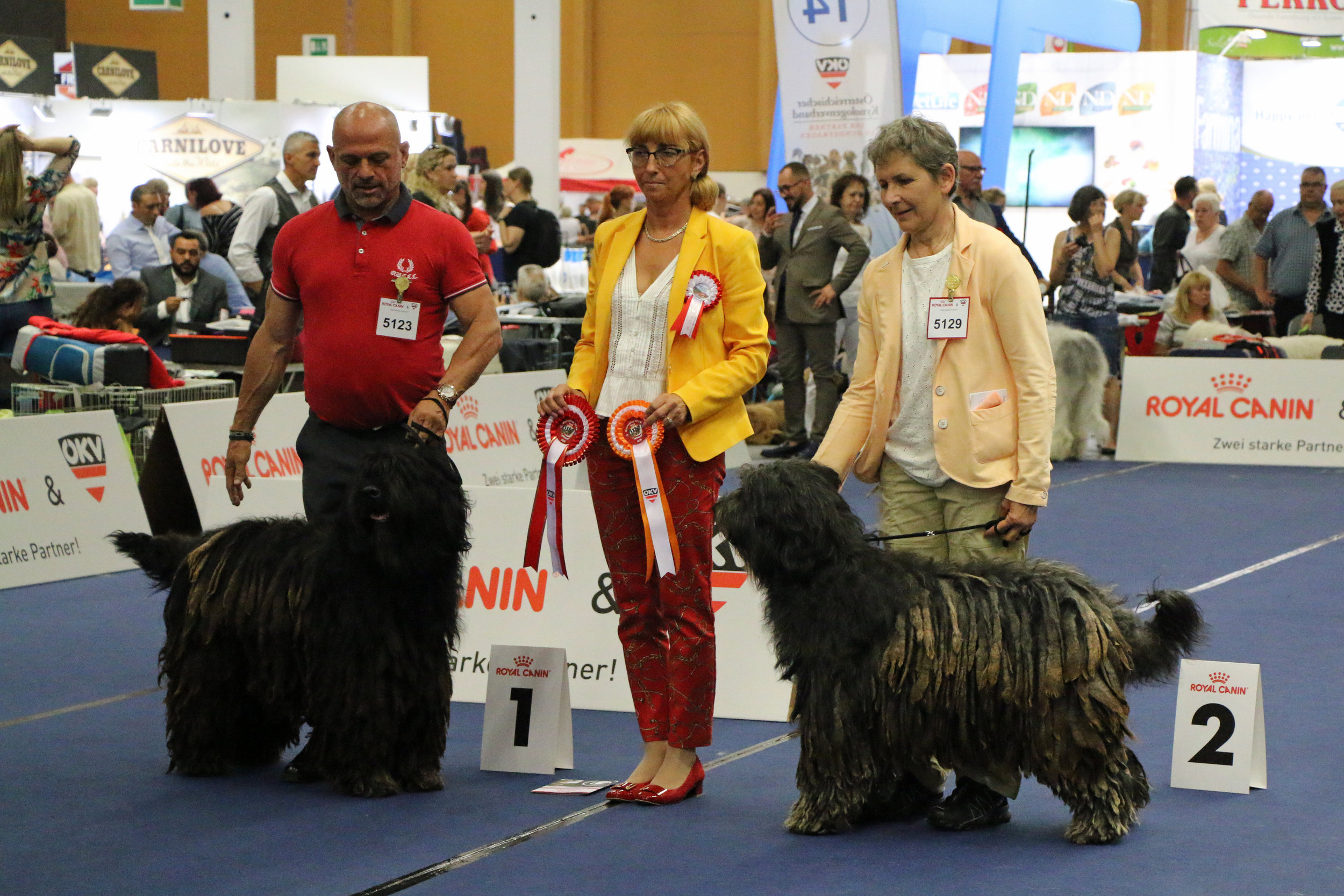 EUROPEAN WINNER, Ishtaran dei Lubercali and Iris dei Lupercali