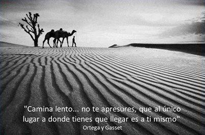 """""""Camina lento... no te apresures, que al único lugar a donde tienes que llegar es a ti mismo"""" Ortega y Gaset."""