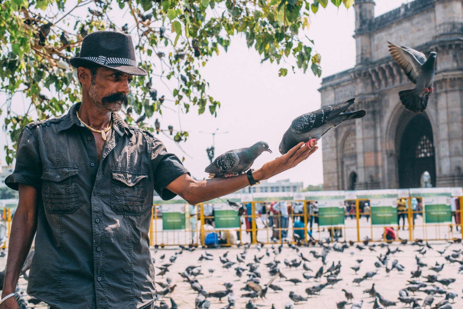 Birdman of Mumbai (not sure if this is his official title)