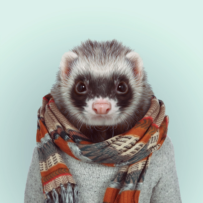 ferret-yago-partal-zoo-portraits.jpg
