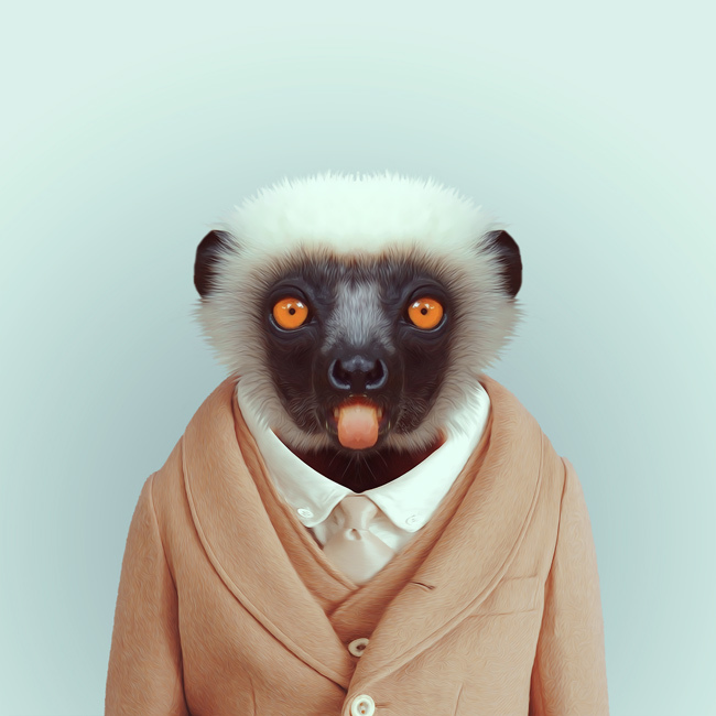 lemur-yago-partal-zoo-portraits.jpg