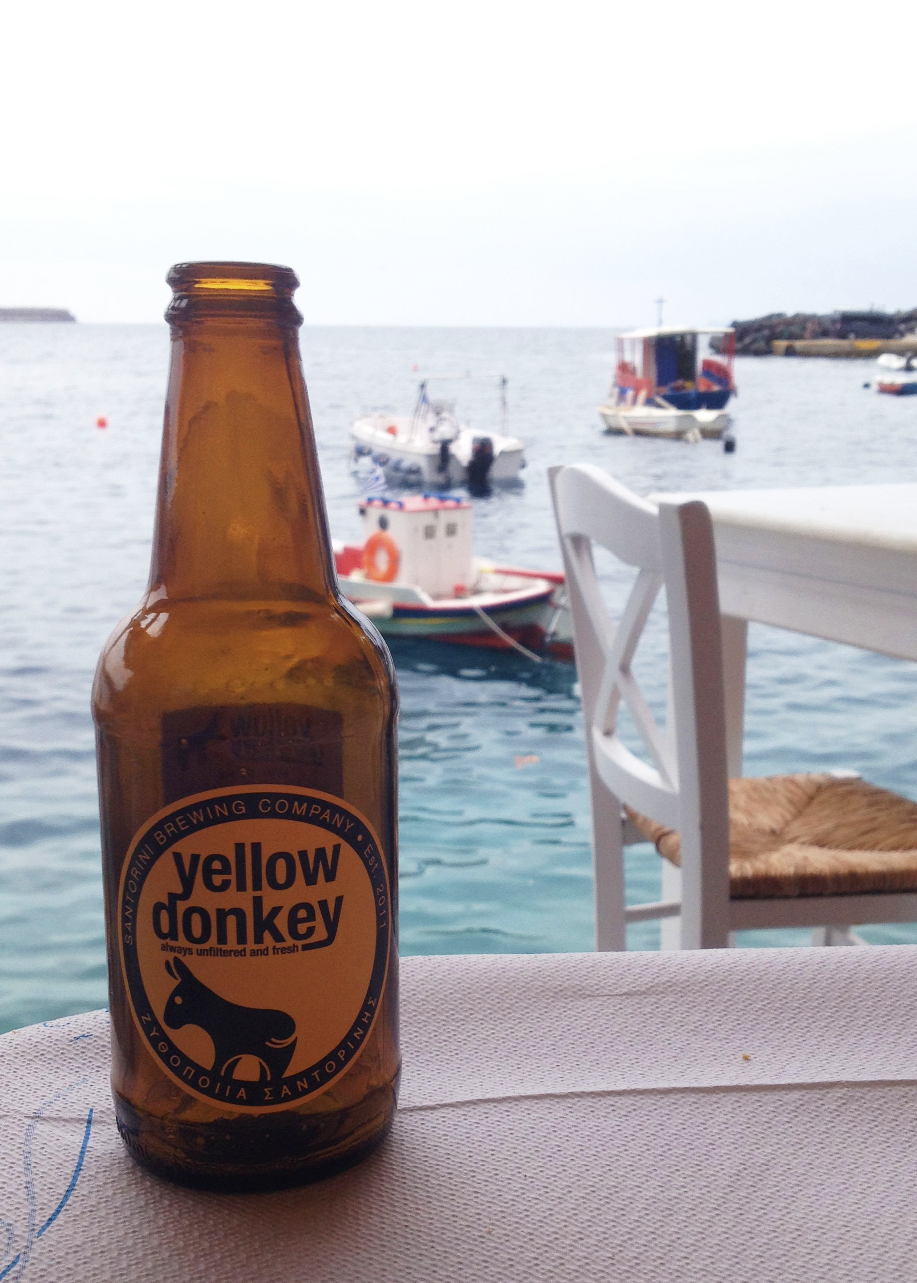 Yellow donkey beer. Mitch had the Red Donkey which was hoppier.