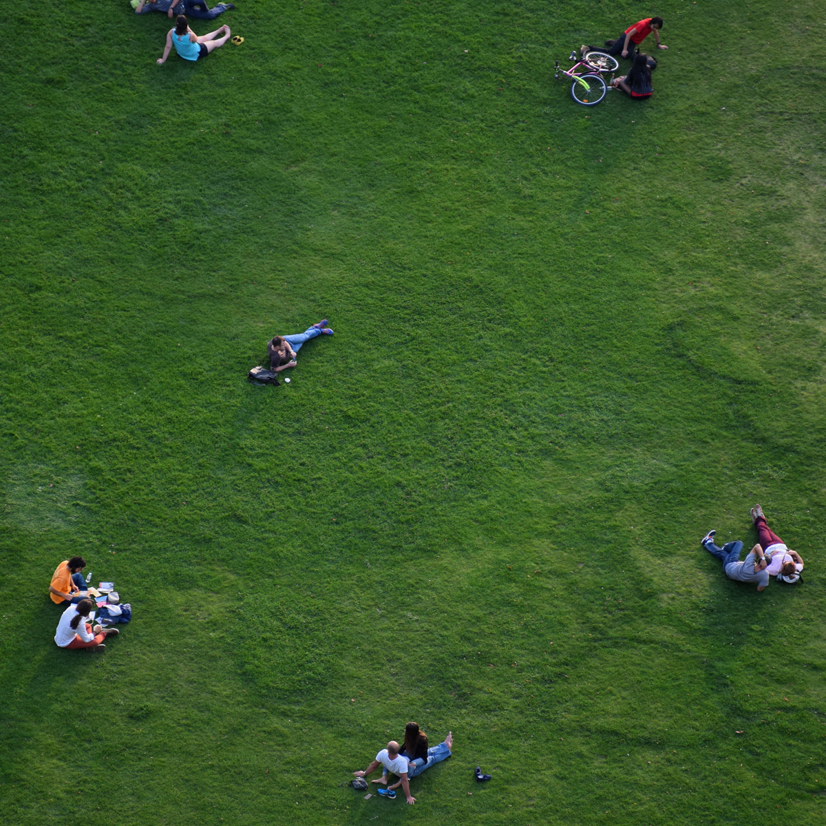 berlin-dome-grass.jpg