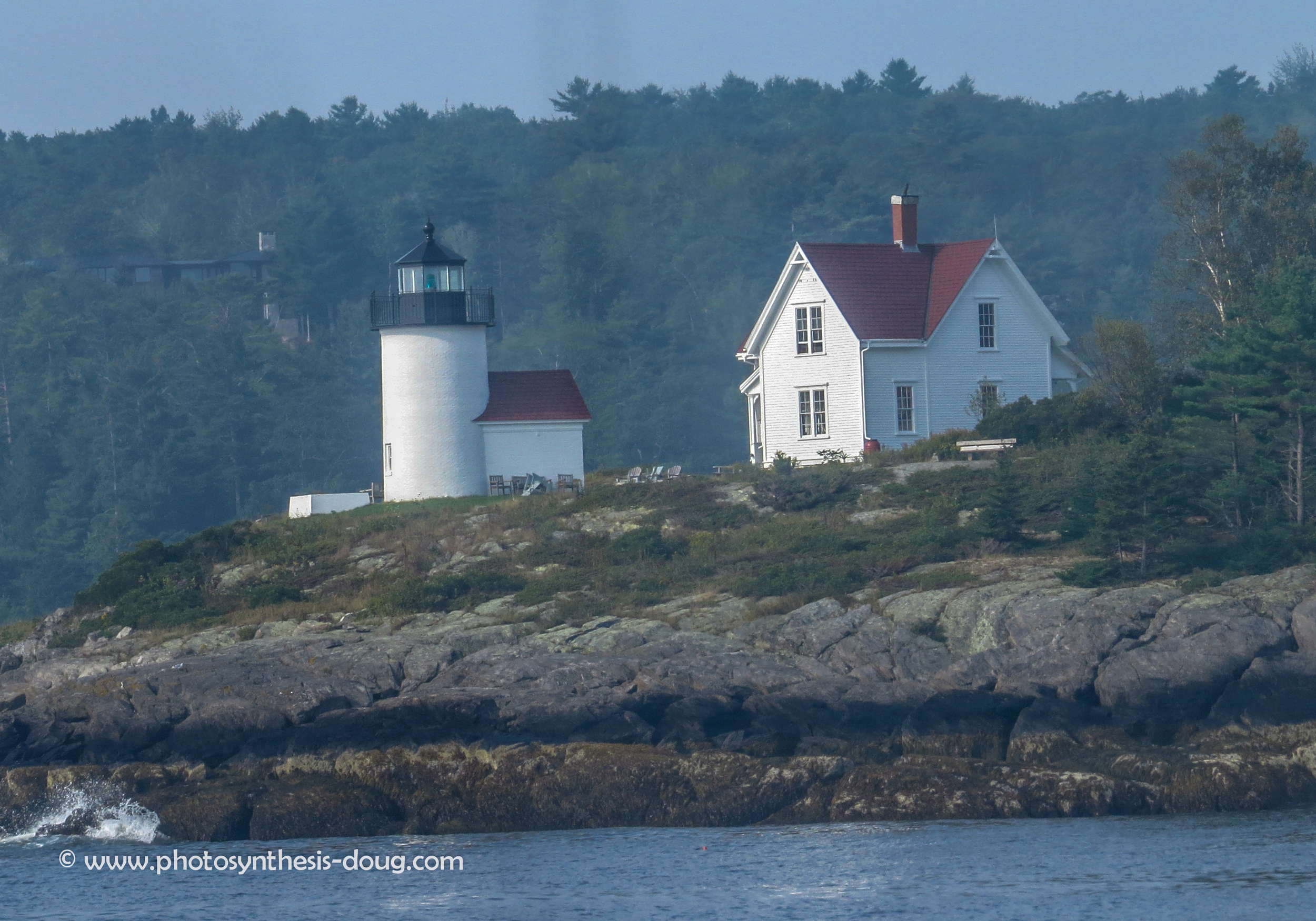 Curtis Island-4666.jpg