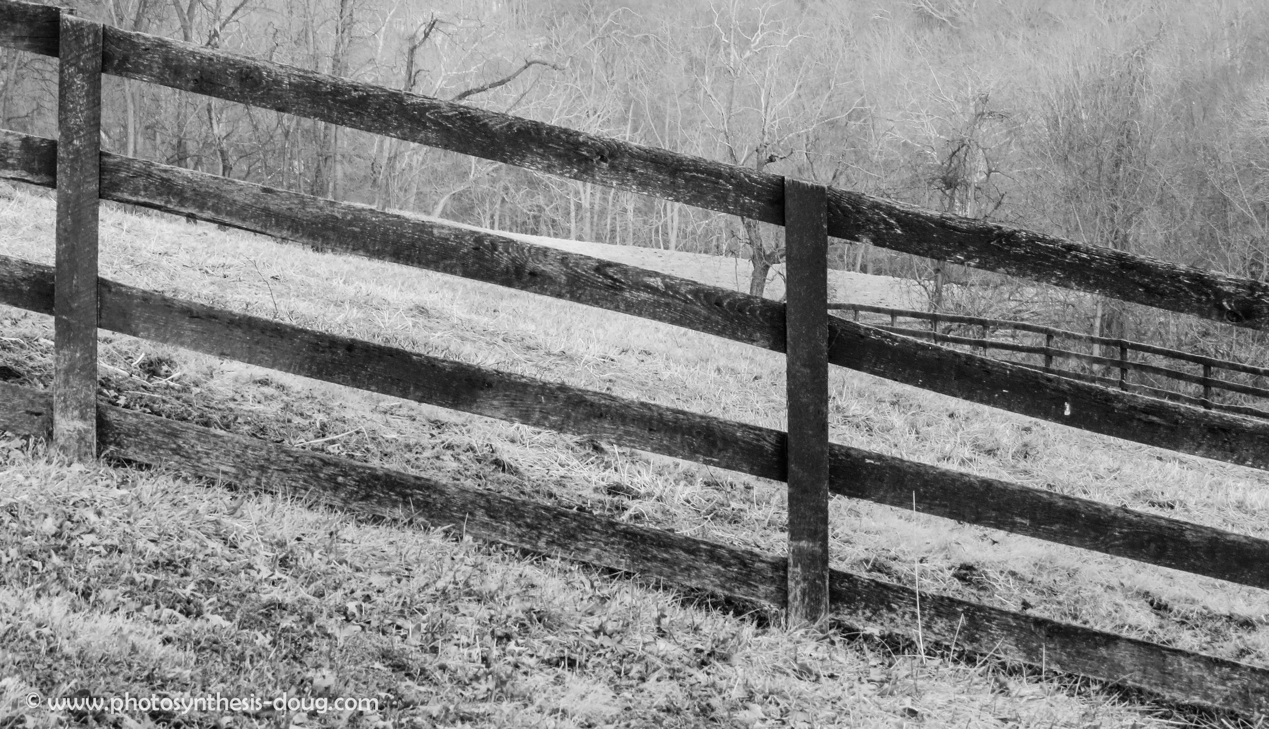sunset fence 2 b&w-6672.JPG