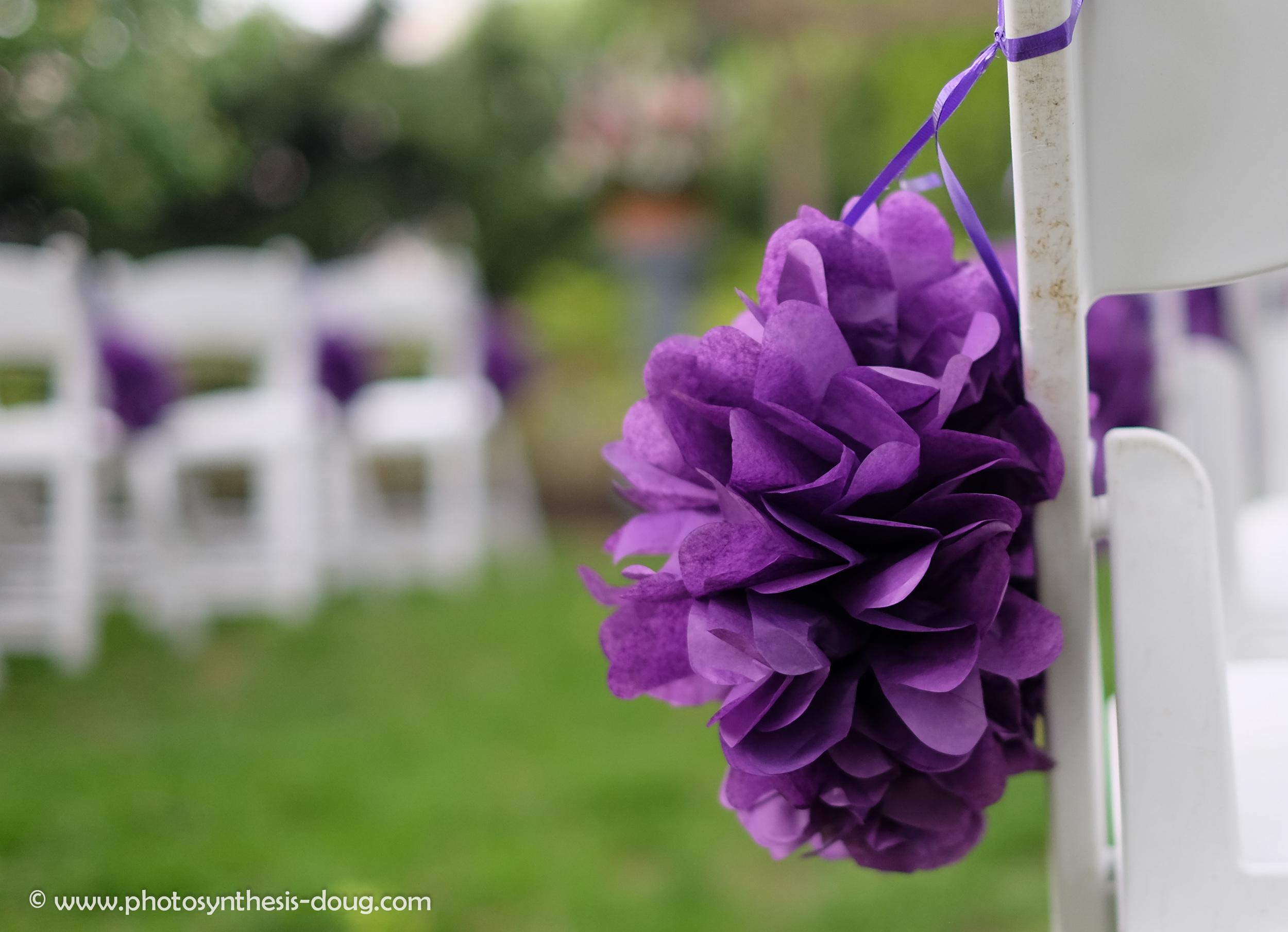 wedding work-4992.JPG