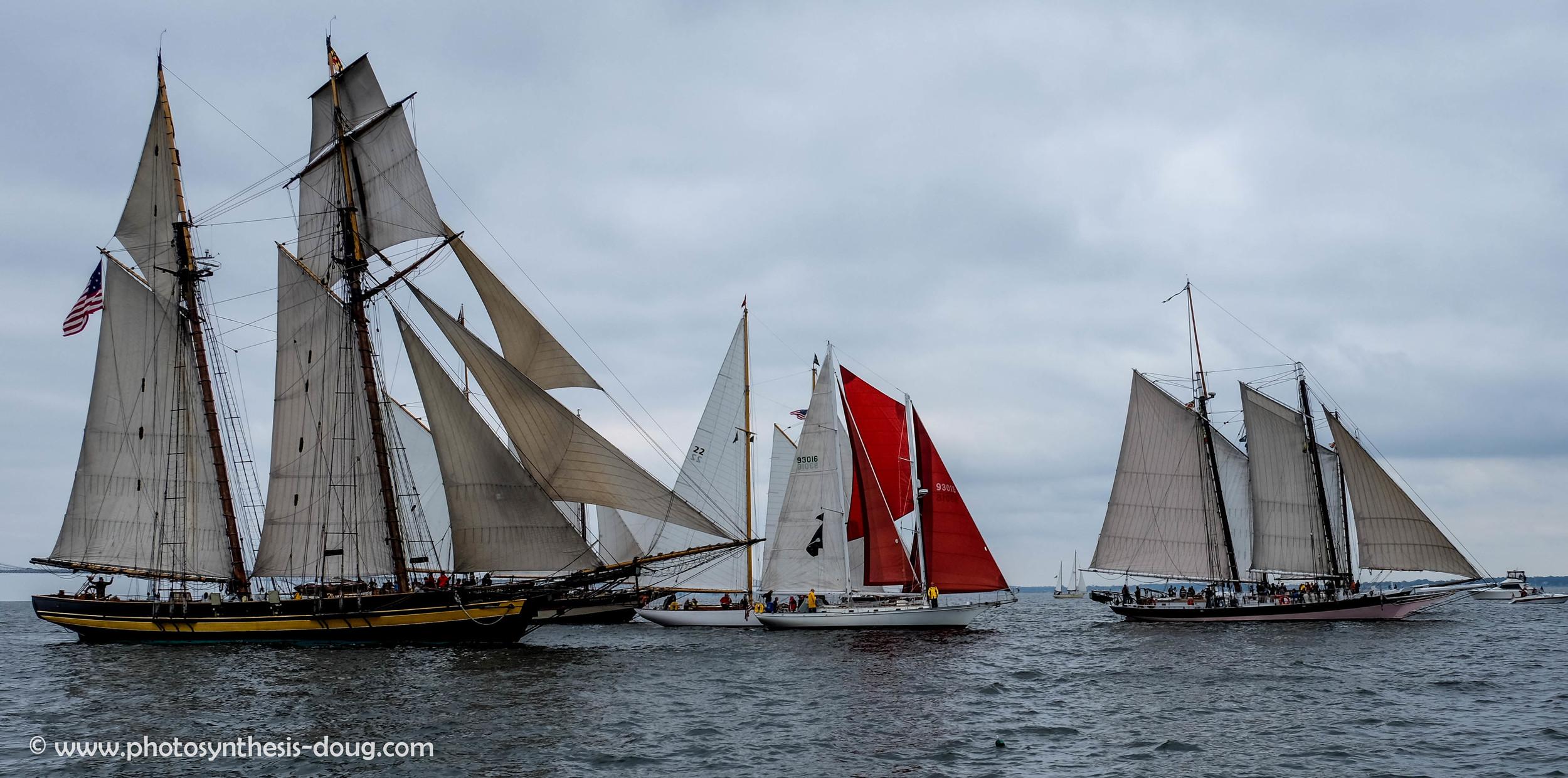 2014 Annapolis to Norfolk Schooner Race