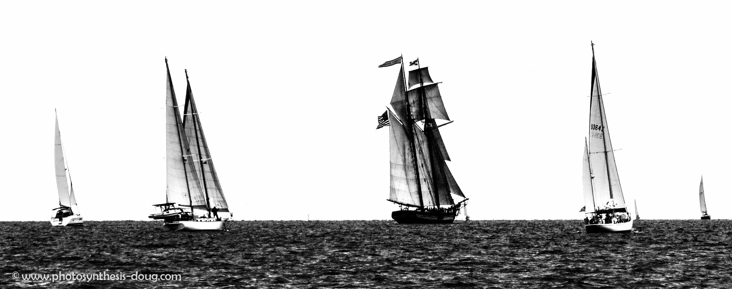 schooner 9-0980.JPG