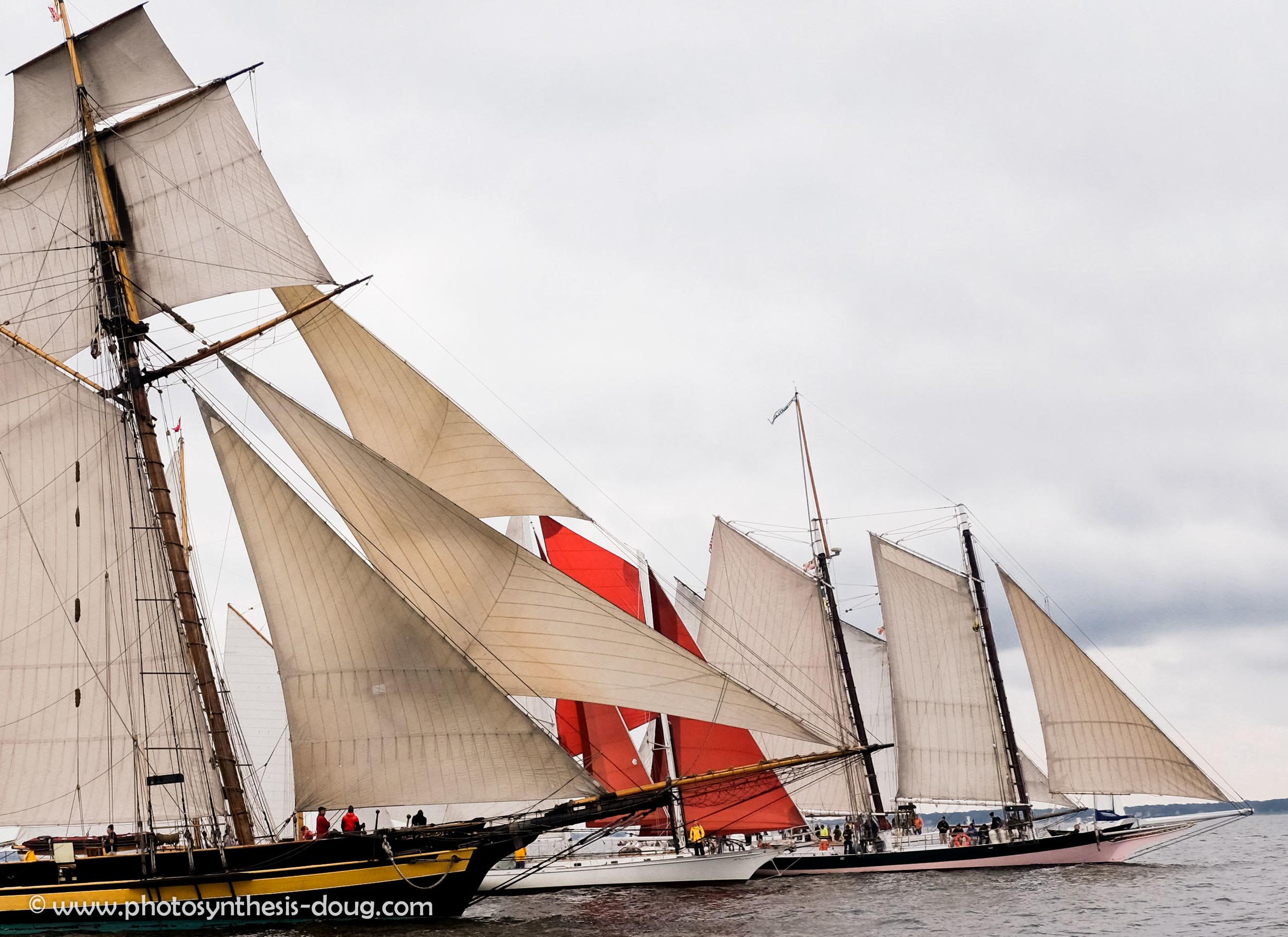 schooner 9-1164.JPG