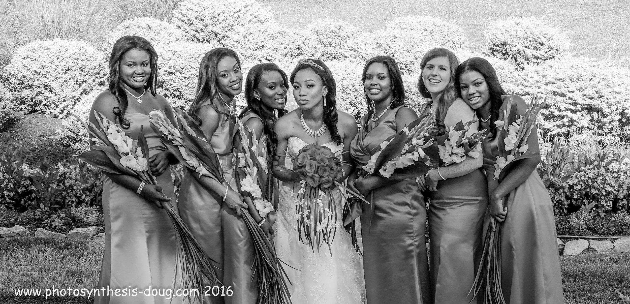 Brides by Doug-7869.jpg