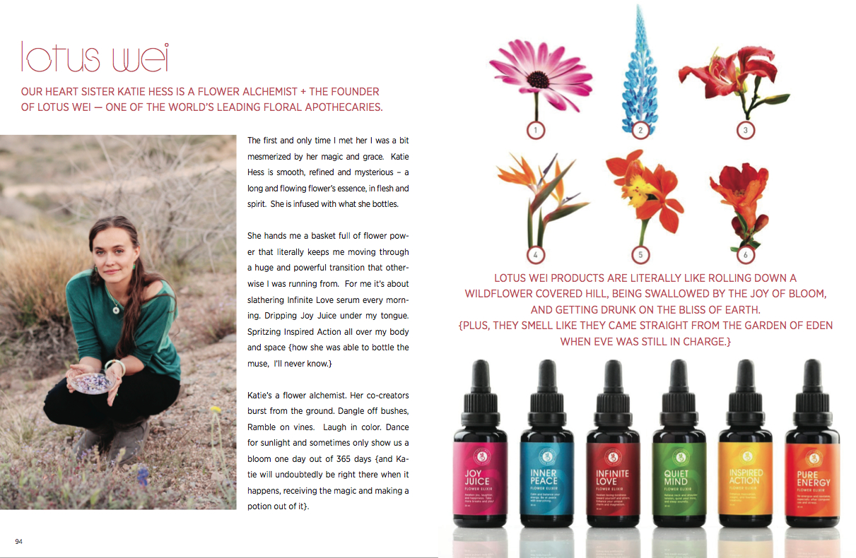 Recent article in our Amulet, Field Guide for Living Wise