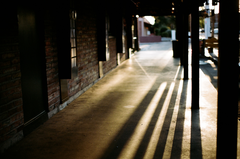 Shot on Kodak Portra 35mm film.
