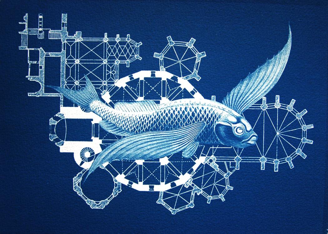 fish 22.jpg