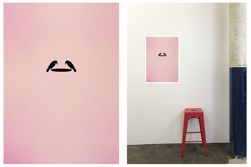 TRAVIS PATERSON,  Fledge II , digital print on rag paper, Edition of 7, 70 x 50 cm $250 each, unframed.  (Still available)