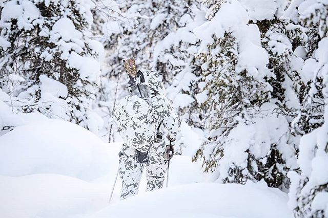 @alwayshunting.dk on the #hunt for #capercaillie in #lapland  #reportage for @jagtvildtogvaaben Trip arranged by @nordguide.se  #swedishlapland #sweden #sverige #jaktbilder #jakt #lookingforbirds #itsinmynature #intothewild #intotheunknown #birdhunting #adventure #camo #snow #nikond5 #nikon #d5 #huntinglife