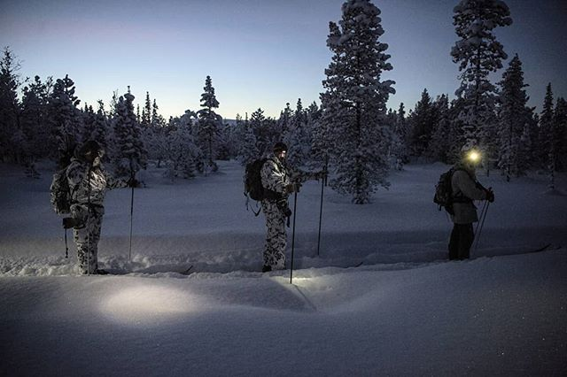 You have 4 hours and 12 minutes from #sunrise to #sunset in #swedishlapland during the #winter  The days are short and even when the sun is up it is not always bright  #hunt arranged by @nordguide.se #reportage for @jagtvildtogvaaben  #capercaillie #skogsfugljakt #jaktbilder #itsinmynature #tiur #wildernessculture #wilderness #skiing #wintersport #jagt #sweden #lapland #sverige #dusk