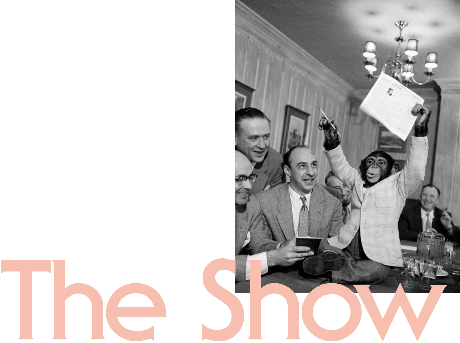 the-show.png