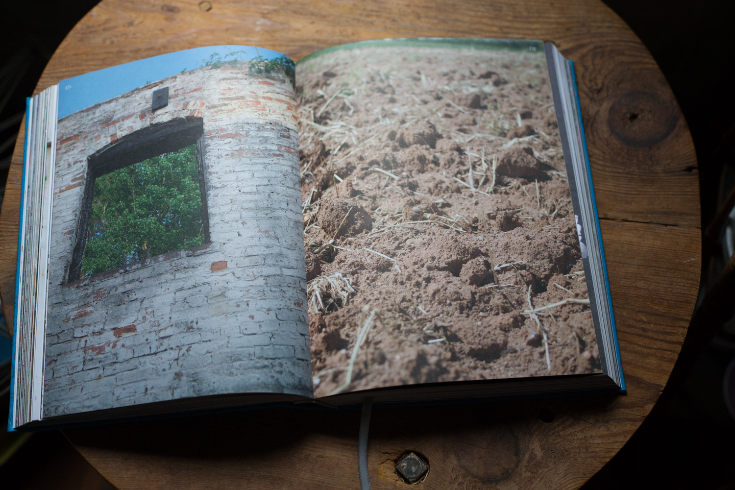 beauty_everyday_book_pages-2366.jpg