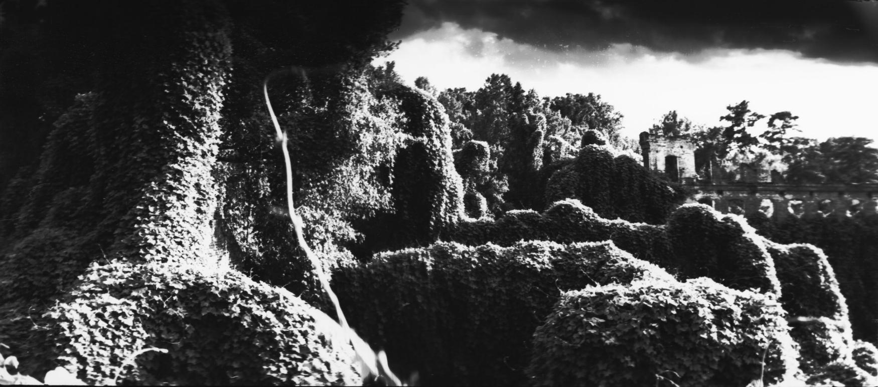 Joshua Gibson - Rockingham2.jpg