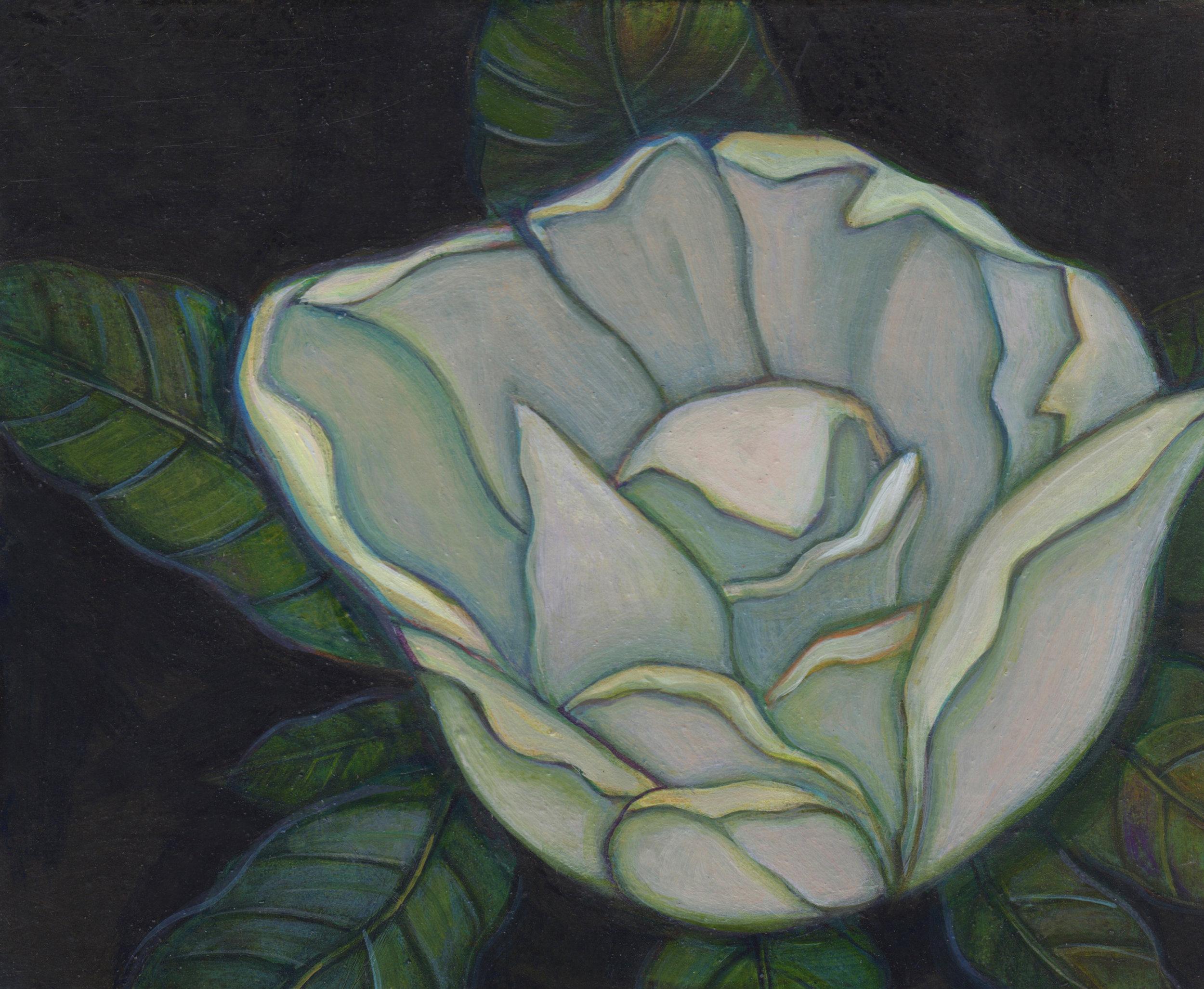 sandoz_suwi1516_magnolia_study.jpg