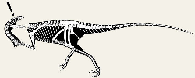 ichabod_skeletal.jpg