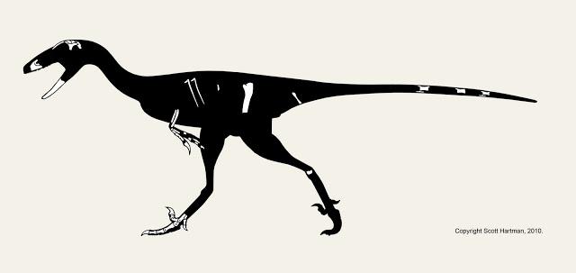 Stenonychosaurus+rigorous4blog.jpg