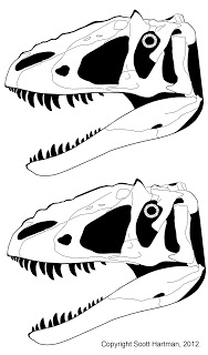 Yutyrannus+head+comparison.jpg