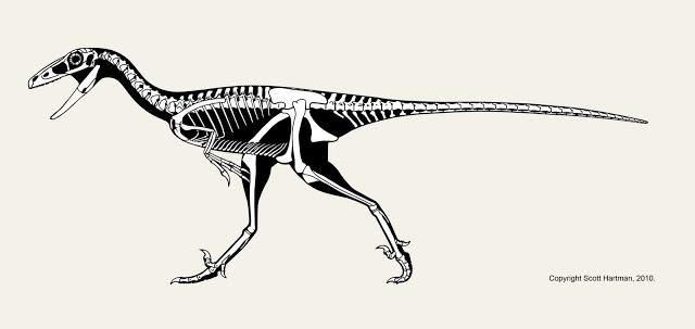 Troodon4blog.jpg