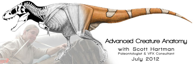 advancedCreature-Anatomy-header.jpg