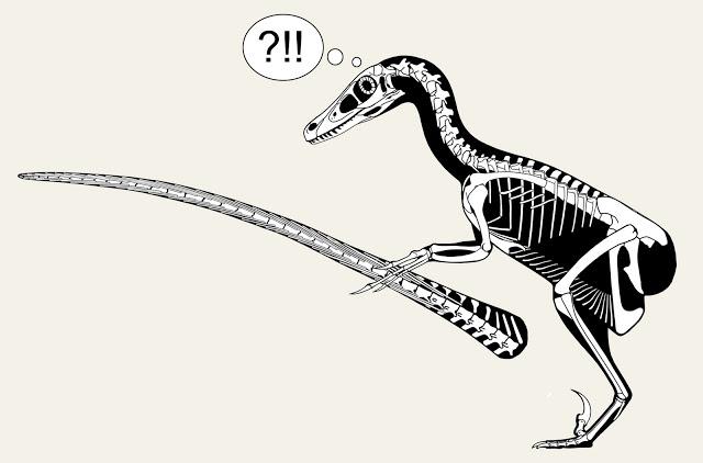 Velociraptor+tail+header.jpg
