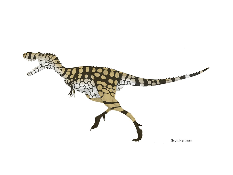 gorgosaurus.jpg