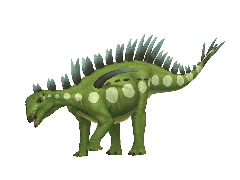 Huayangosaurus.jpg