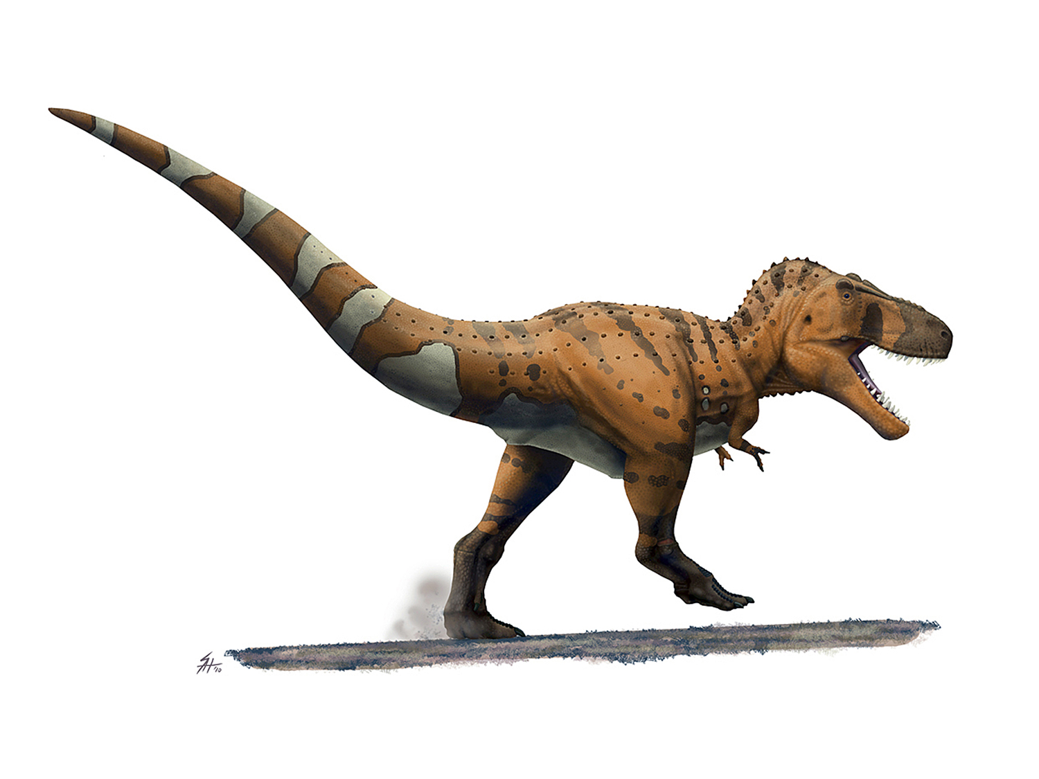 Stan the T. rex in a hurry