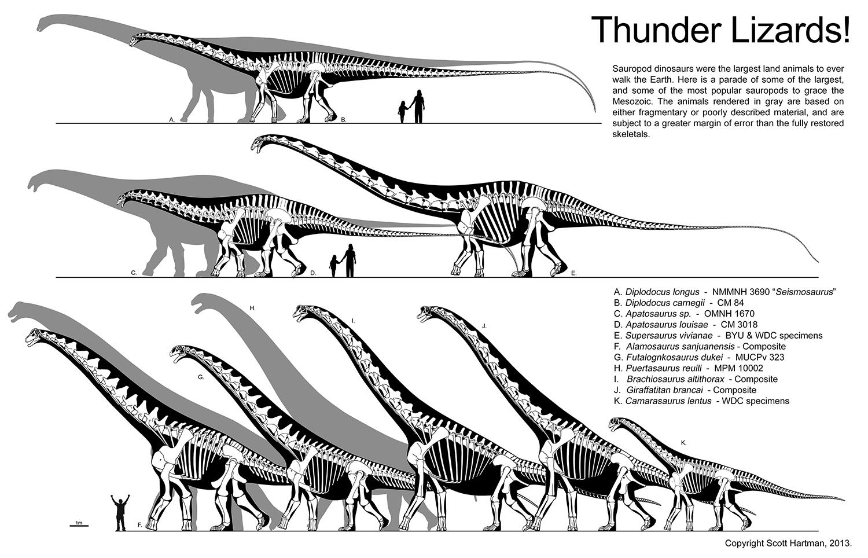 Thunder Lizards 4 blog.jpg