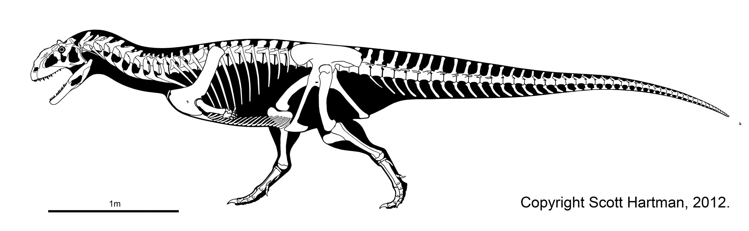 majungasaurus_updated.jpg