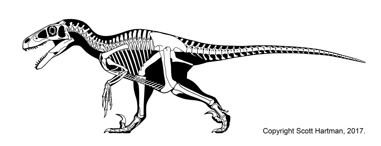 Here is  Utahraptor , in all of its crazy, robust goodness!