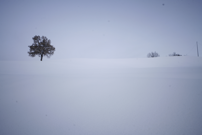 neve+natura-succiso+2405.jpg